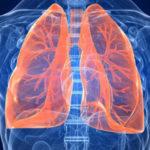Врачи в шоке, бобровая струя помогает лечению туберкулеза