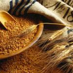 Где можно закупить большое количество зерновой продукции?