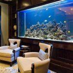 Дизайнерские решения для аквариумов